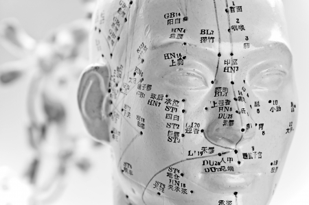 Acupuncture head model Stock Photo