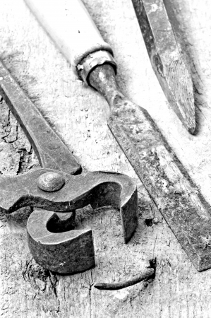 old rusty pliers with  nail photo