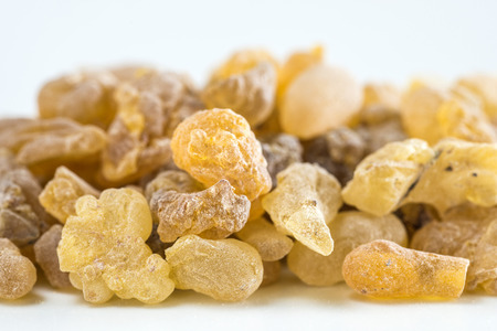 Olibanum, Boswellia serrata Stock Photo
