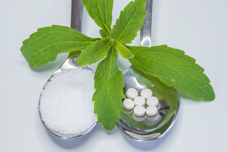 Stevia rebaudiana, support for sugar, tablets and powder