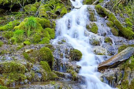 falling down: Wild creek falling down a hill