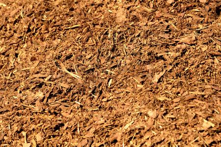 bark mulch: Bark mulch Stock Photo