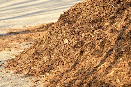 Bark mulch Stockfoto