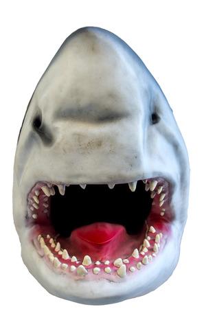 model fish: Shark, model of a head Stock Photo