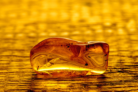 inclusions: amber with inclusions