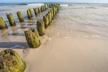 dyke: Groins in the Baltic Sea Stock Photo