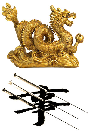 acupuncture needles: acupuncture needles with chinese dragon