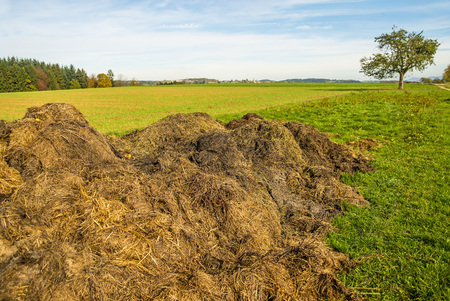 dung: dung hill Stock Photo