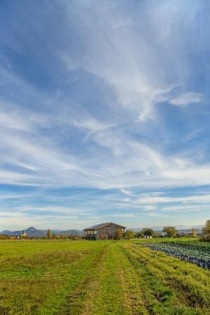 limetree: Country scene in autumn Stock Photo
