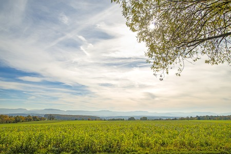 swabian: Bees pasture with view to the German highlands Swabian Alb Stock Photo