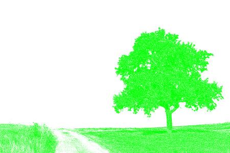 way: tree on a way