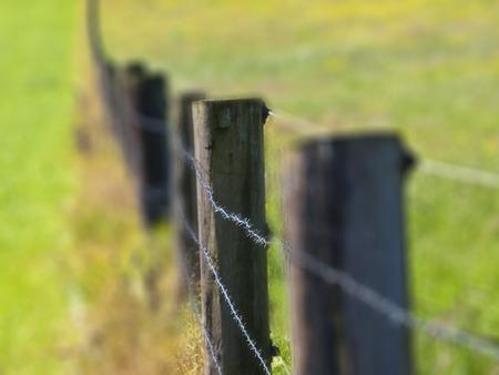 tiefe: Zaun mit flachen Bereich der Tiefe