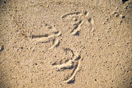 vogelspuren: Spuren einer M�we in Sand Lizenzfreie Bilder