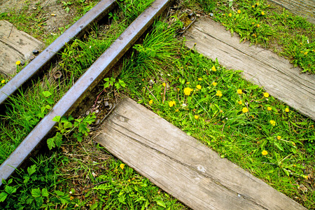 disused: rails out of order with flowers
