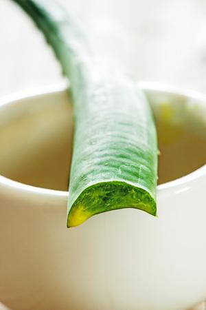 nature cure: Aloe vera fresh leaf with mortar Stock Photo