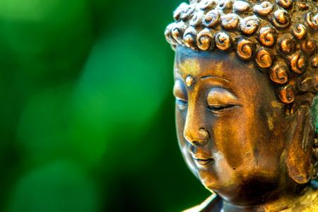 cabeza de buda: la cabeza de Buda con el fondo borroso verde