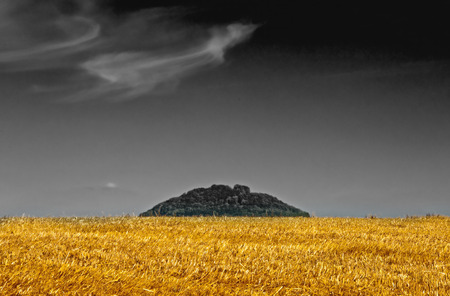 stubble field: stubble field with hill, colored