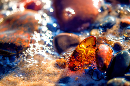 Amber on a beach of the Baltic Sea Stok Fotoğraf