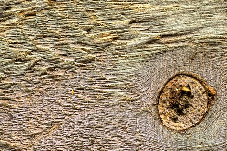 old plank with texture and knothole