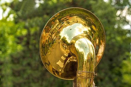 tuba on a city firmly