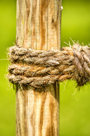 thick rope with green background
