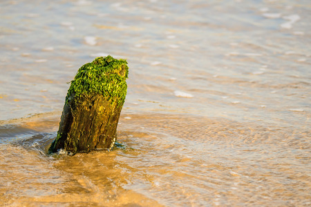 old groin in the Baltic Sea