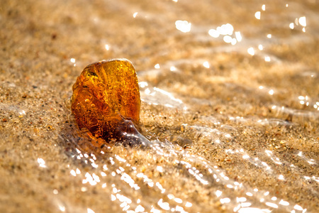 Amber on a beach of the Baltic Sea in the surf  Banque d'images