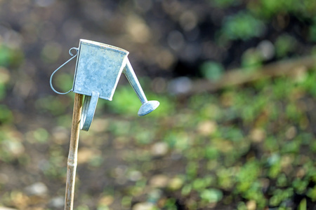 mini watering can in a garden Stock Photo