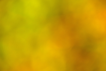 colorful blurred background of yellow and green