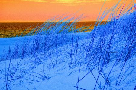 beach of the Baltic sea with beach grass
