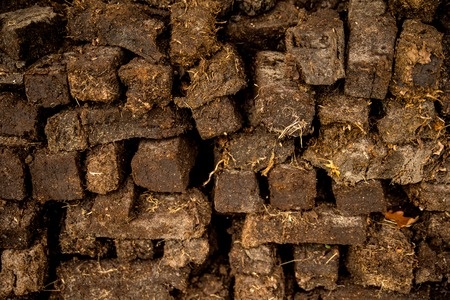 peat, closeup of a stock Stockfoto