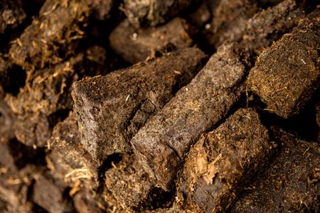 peat, closeup of a stock Reklamní fotografie