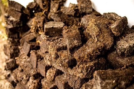 peat, closeup of a stock Reklamní fotografie - 112246483