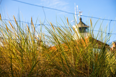 European marram grass with old lighthouse