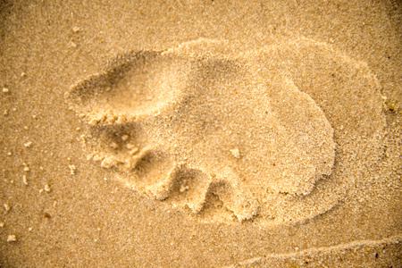 footprint on a beach Standard-Bild - 119602913
