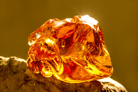 Amber in sun with inclusions Standard-Bild - 119603004