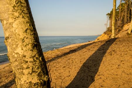 beach of the Baltic Sea in Orzechowo, Poland Standard-Bild - 119603067