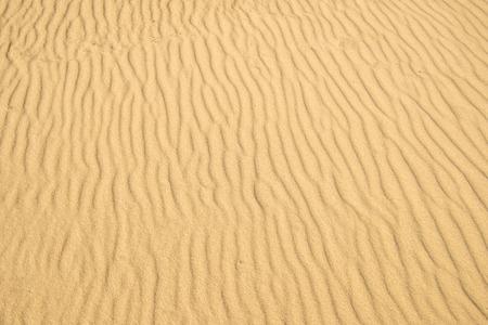 Sand of a beach with wave patterns Standard-Bild - 119603068