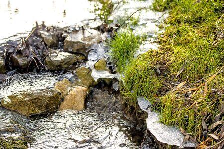 kleiner Bach im Winter mit Eis und Grünpflanzen