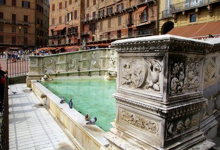 Special fountain (gaia) in SIENA piazza del campo