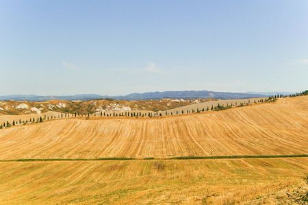 Typical view of Tuscany