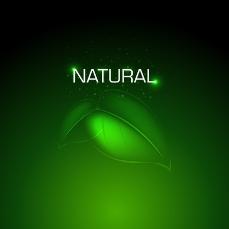 Vector Natural background Design Stock Vector - 11243704