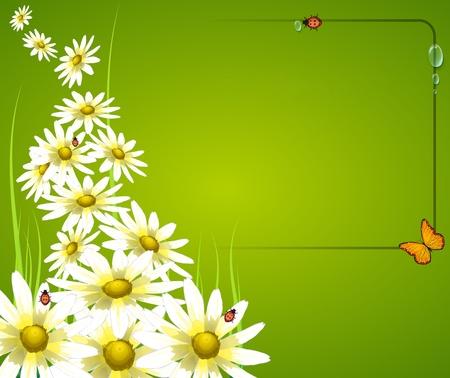 chamomile tea: floral frame card background Illustration
