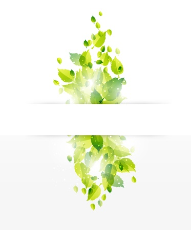 nature banner background, leaf design Vector