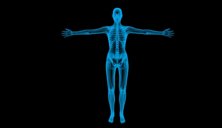 human body by X-ray, 3d render  photo