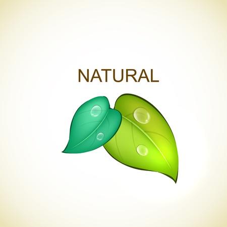 Natural Design Stock Vector - 17180388