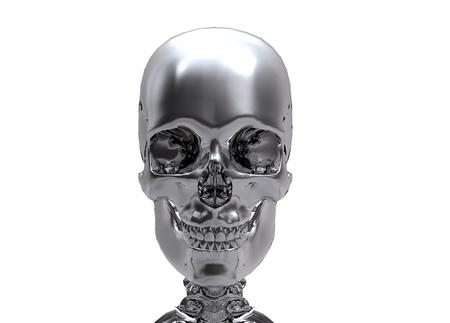 silver Human skull  photo