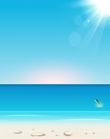 seacoast: summer seaside view