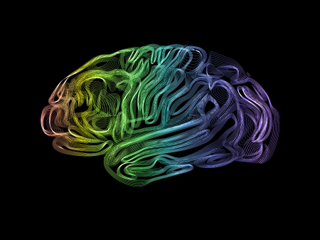 Creative concept of the human brain, vector, easy editable photo