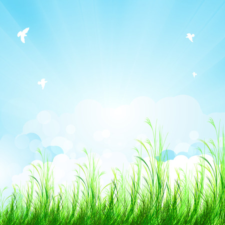 summer sky: Spring amazing scenery, easy editable Illustration